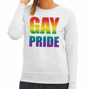 Gay pride regenboog tekst sweater grijs dames t-shirt kopen
