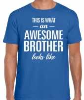 Awesome brother tekst blauw heren t-shirt