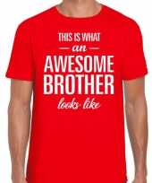 Awesome brother tekst rood heren t-shirt