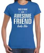 Awesome friend cadeau blauw dames t-shirt