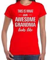 Awesome grandma oma cadeau rood dames t-shirt