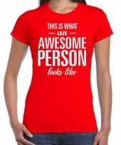 Awesome person persoon cadeau rood dames t-shirt