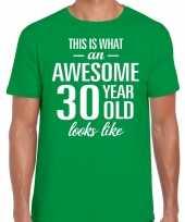 Awesome year jaar cadeau groen heren t-shirt 10199998