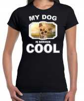 Chihuahua honden my dog is serious cool zwart dames t-shirt 10246165