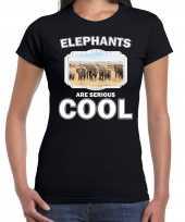 Dieren olifant zwart dames elephants are cool kudde olifanten t-shirt