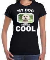 Maltezer honden my dog is serious cool zwart dames t shirt