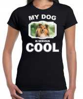Sheltie honden my dog is serious cool zwart dames t-shirt 10246164